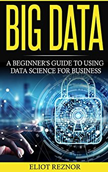 Eliot Reznor – Big Data: A Beginner's Guide To Using Data Science For Business