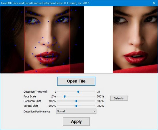 Luxand FaceSDK 6.3.1 (x64 x86)