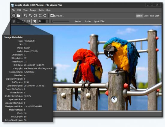 File Viewer Plus 2.2.0.45 Portable