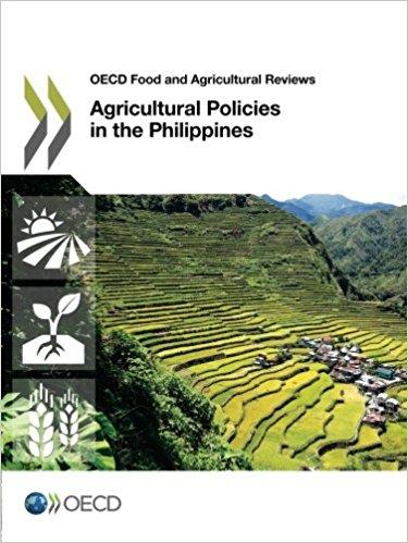 economic development policies of philippines Or corruption, the modern policy development literature does too little to integrate the core ideas of modern political economy with standard economic the essay uses the philippines as a case study to suggest what is wrong with leading prescriptions it suggests a framework that starts from a.