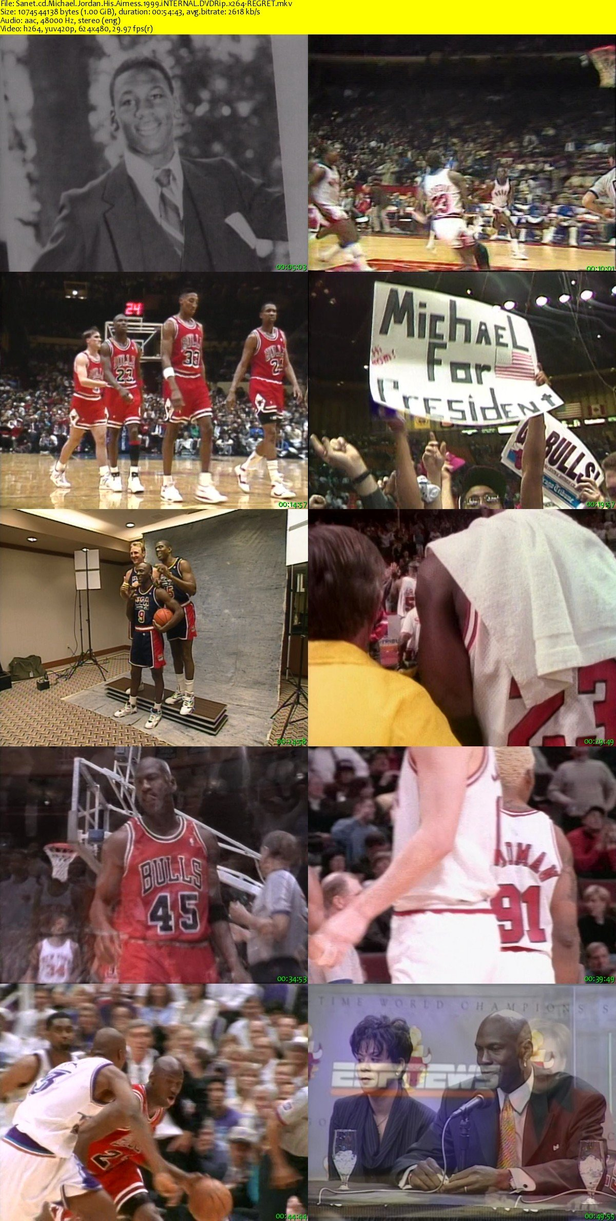 a biography of his airness michael jordan We scurried down the rabbit hole of mj lore to find out if his airness really   conversely, in michael jordan: the life, some bulls employees discuss how  jordan.