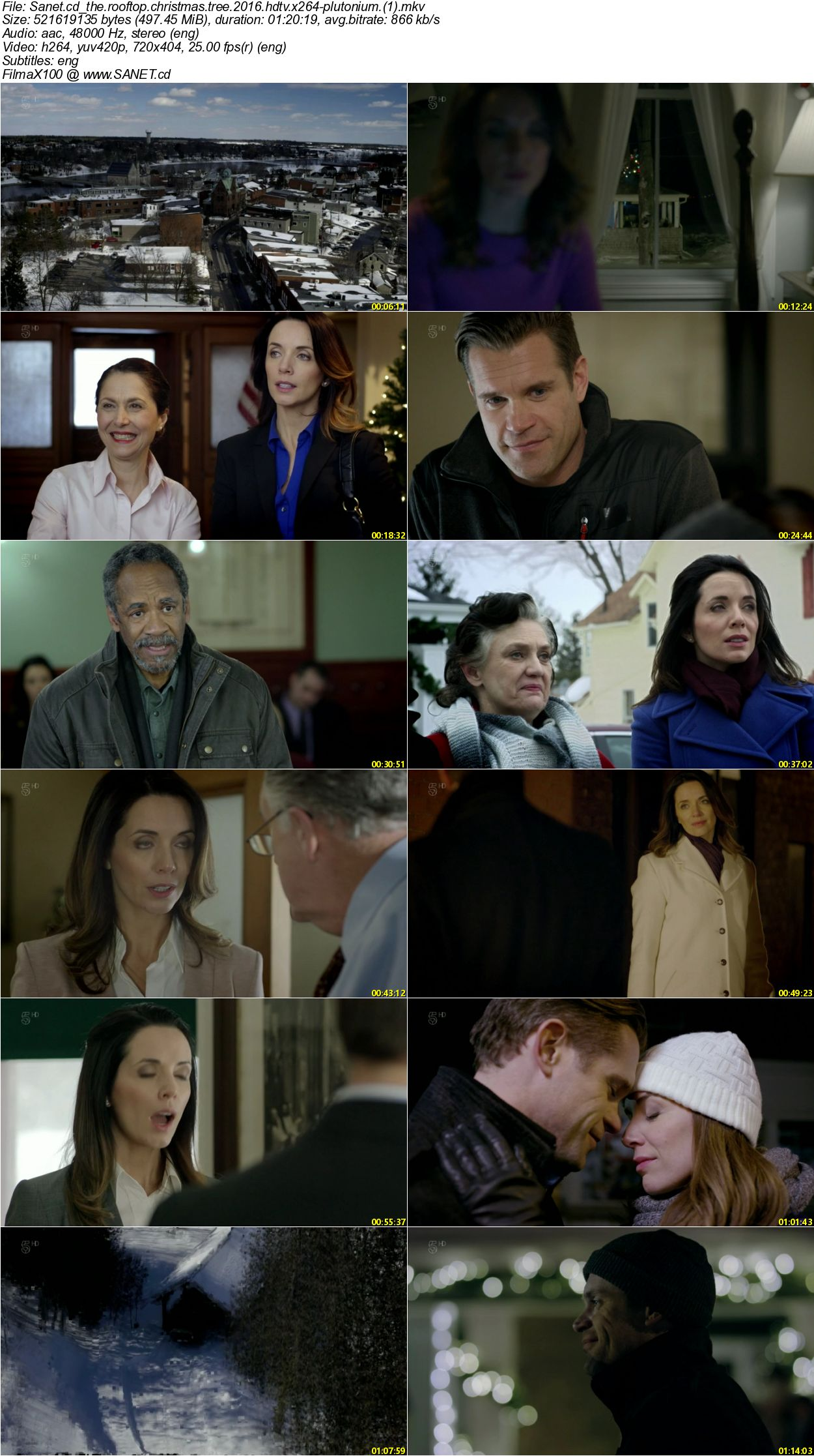 The Rooftop Christmas Tree.Download The Rooftop Christmas Tree 2016 Hdtv X264 Plutonium