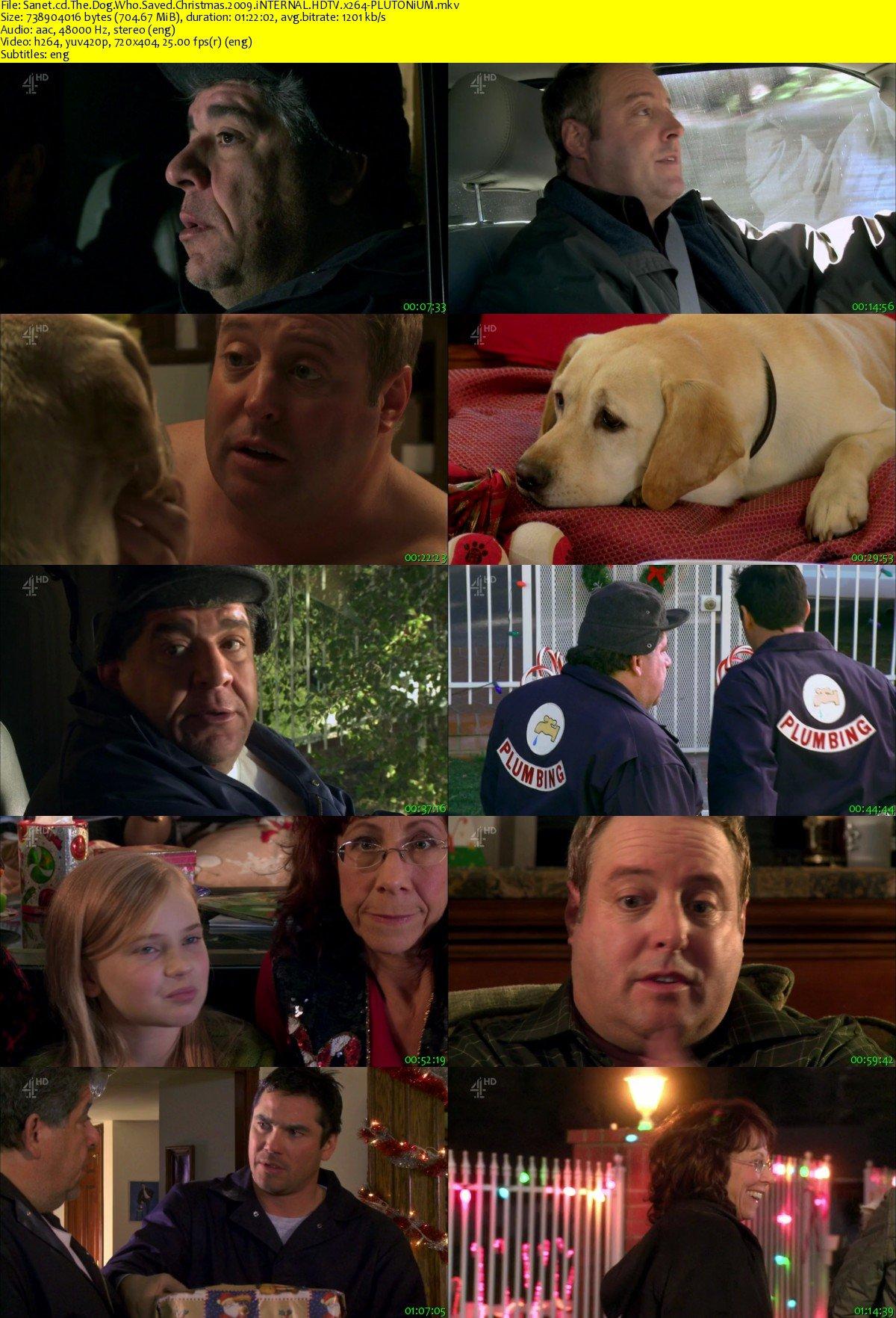 The Dog Who Saved Christmas.Download The Dog Who Saved Christmas 2009 Internal Hdtv X264