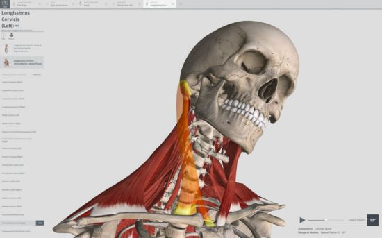 Download Software Complete Anatomy 2018 + Courses 3.2.0 macOS + ...