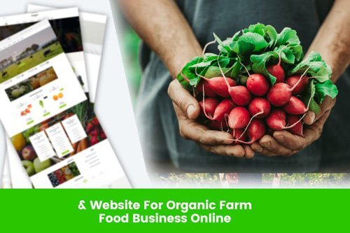 Website For Organic Farm & Food Business Online