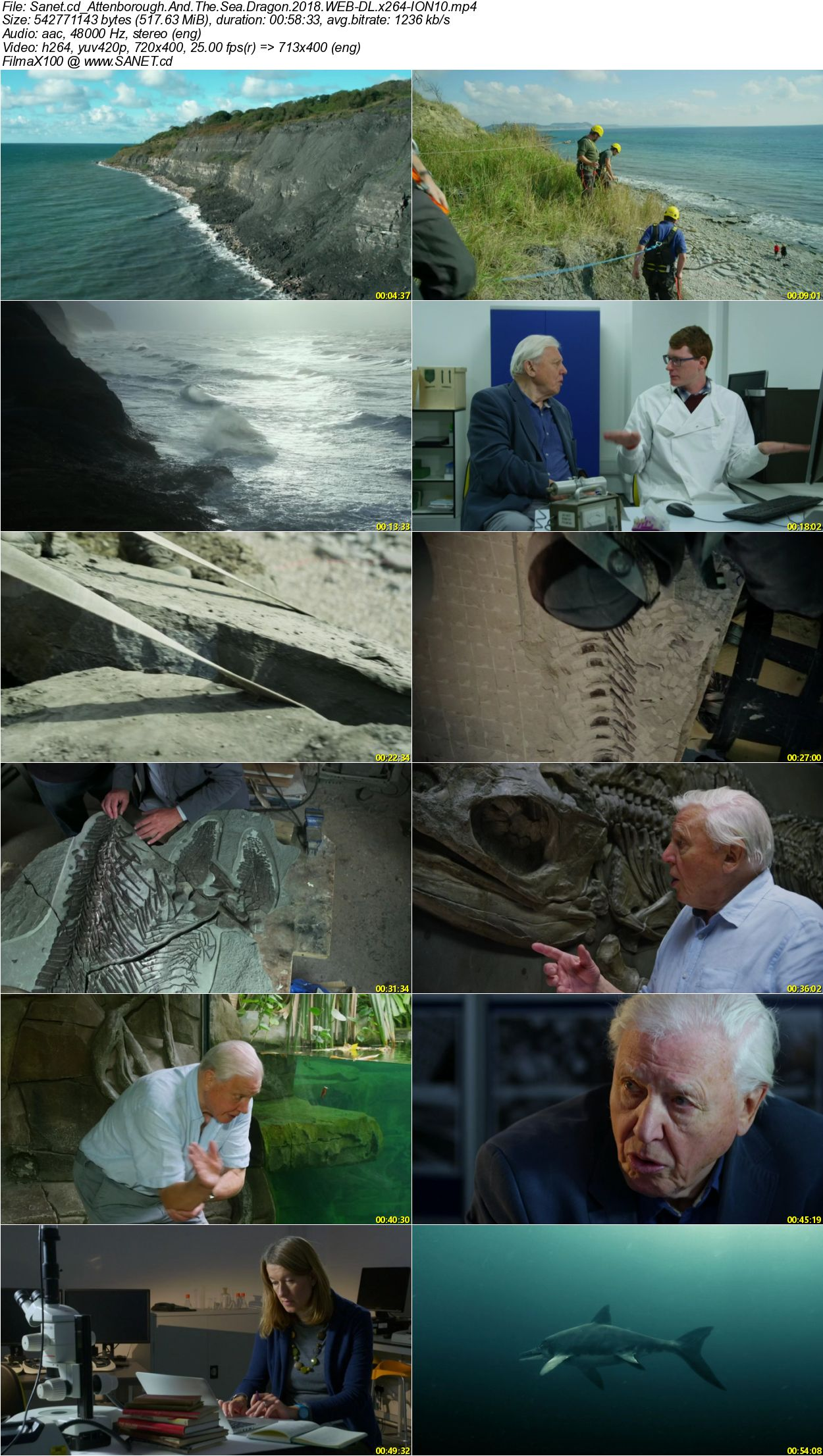 Download Attenborough And The Sea Dragon 2018 Web Dl X264 Ion10