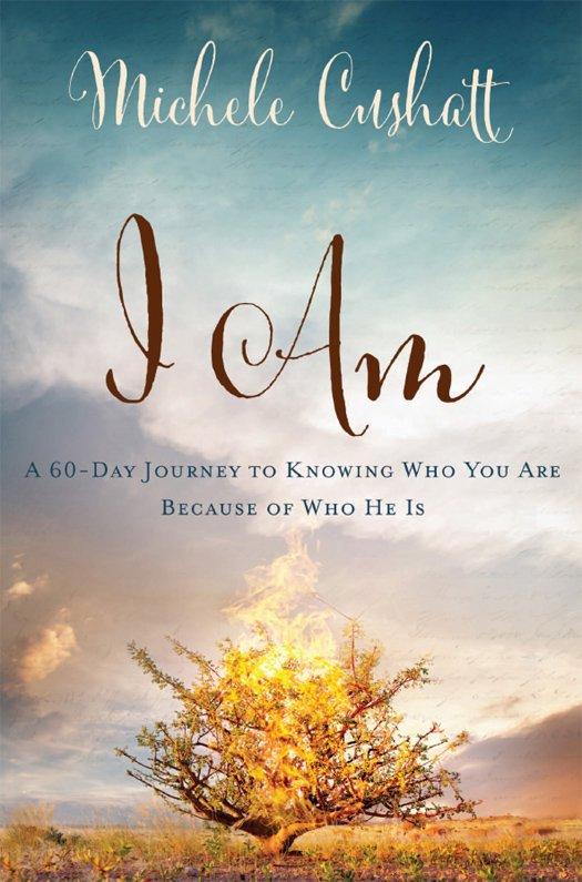 who am i a journey