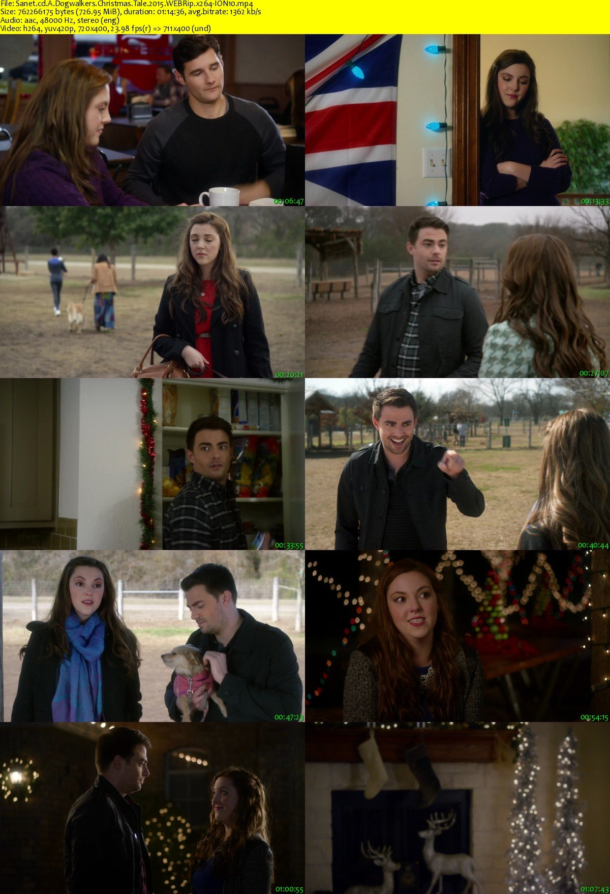 A Dogwalkers Christmas Tale.Download A Dogwalkers Christmas Tale 2015 Webrip X264 Ion10