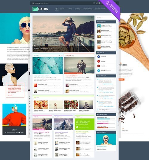 ElegantThemes - Extra v2.0.96 - WordPress Theme