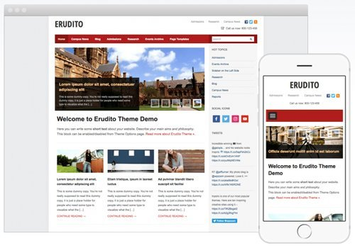 Erudito 1.1.6 – Education WordPress Theme