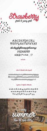Strawberry - Fresh & Juicy Script 1854448