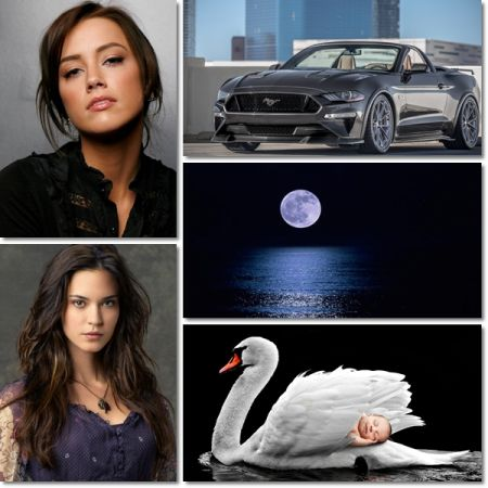 Best Beautiful Wallpapers Pack 1049