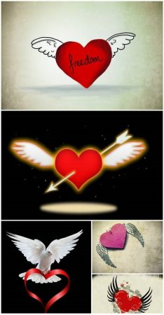 Heart with wings 2 5 UHQ JPEG