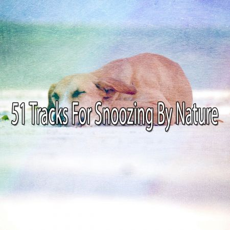 Mother Nature Sound FX - 51 Tracks For Snoozing By Nature (2018)