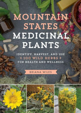 Download Mountain States Medicinal Plants: Identify, Harvest