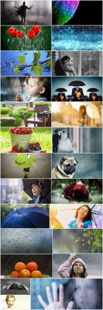 Rain shower wet umbrella nature 25 HQ Jpeg