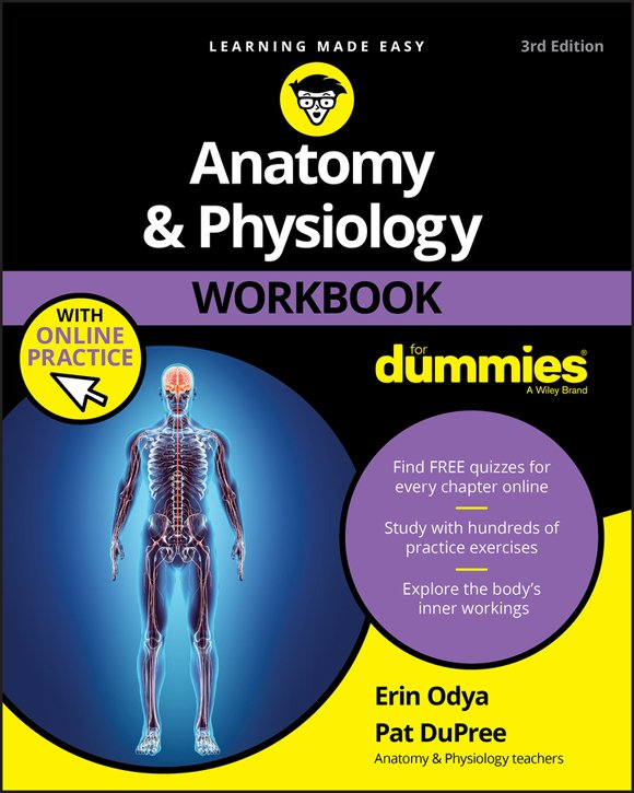 Download Anatomy and Physiology Workbook For Dummies, 3rd Edition ...