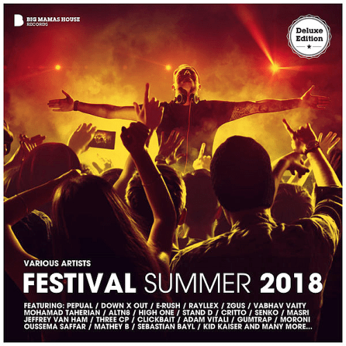VA - Festival Summer 2018 (Deluxe Version) (2018) MP3