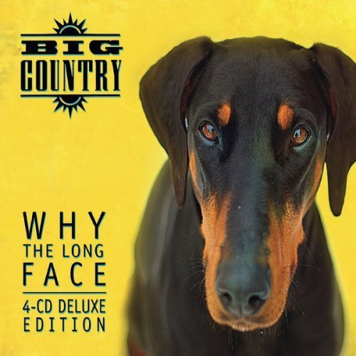 Long Lachi Song Mp3 Download V: Why The Long Face? (Deluxe Expanded