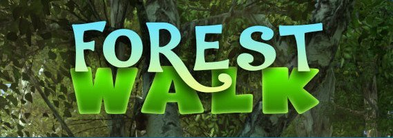 Forest Walk 3D Screensaver 1.0 Build 01
