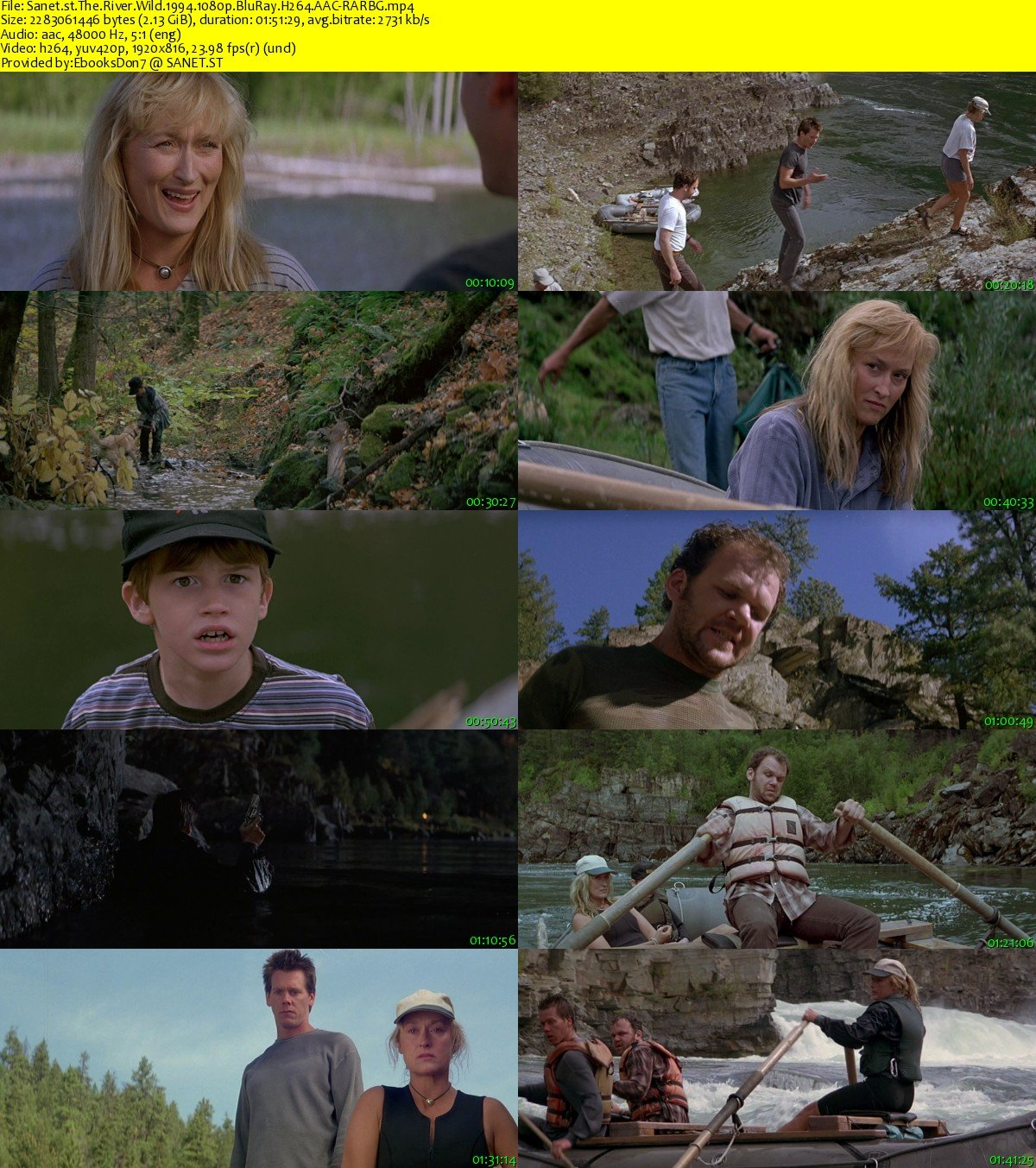 download the river wild 1994 1080p bluray h264 aacrarbg