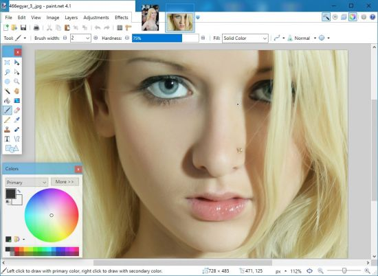 Paint.NET 4.1 Multilingual