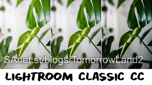Download Lightroom Classic CC: Total Beginner Walkthrough - SoftArchive