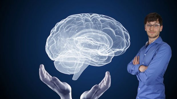 Learn neuroscience: How our brain works in six lectures