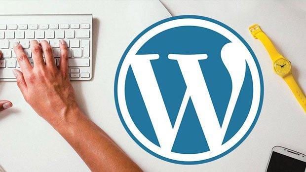 1 Hour Wordpress Website Design - Start to Finish!