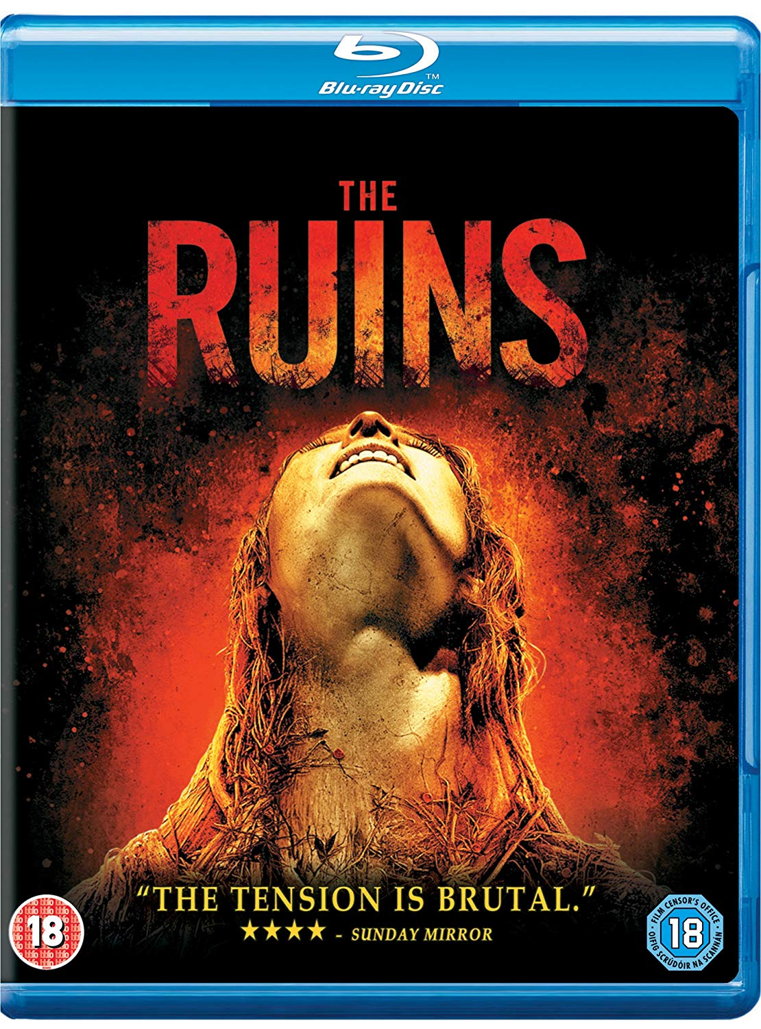 The Ruins 2008 BluRay 480p 300MB Dual Audio ( Hindi – English ) MKV