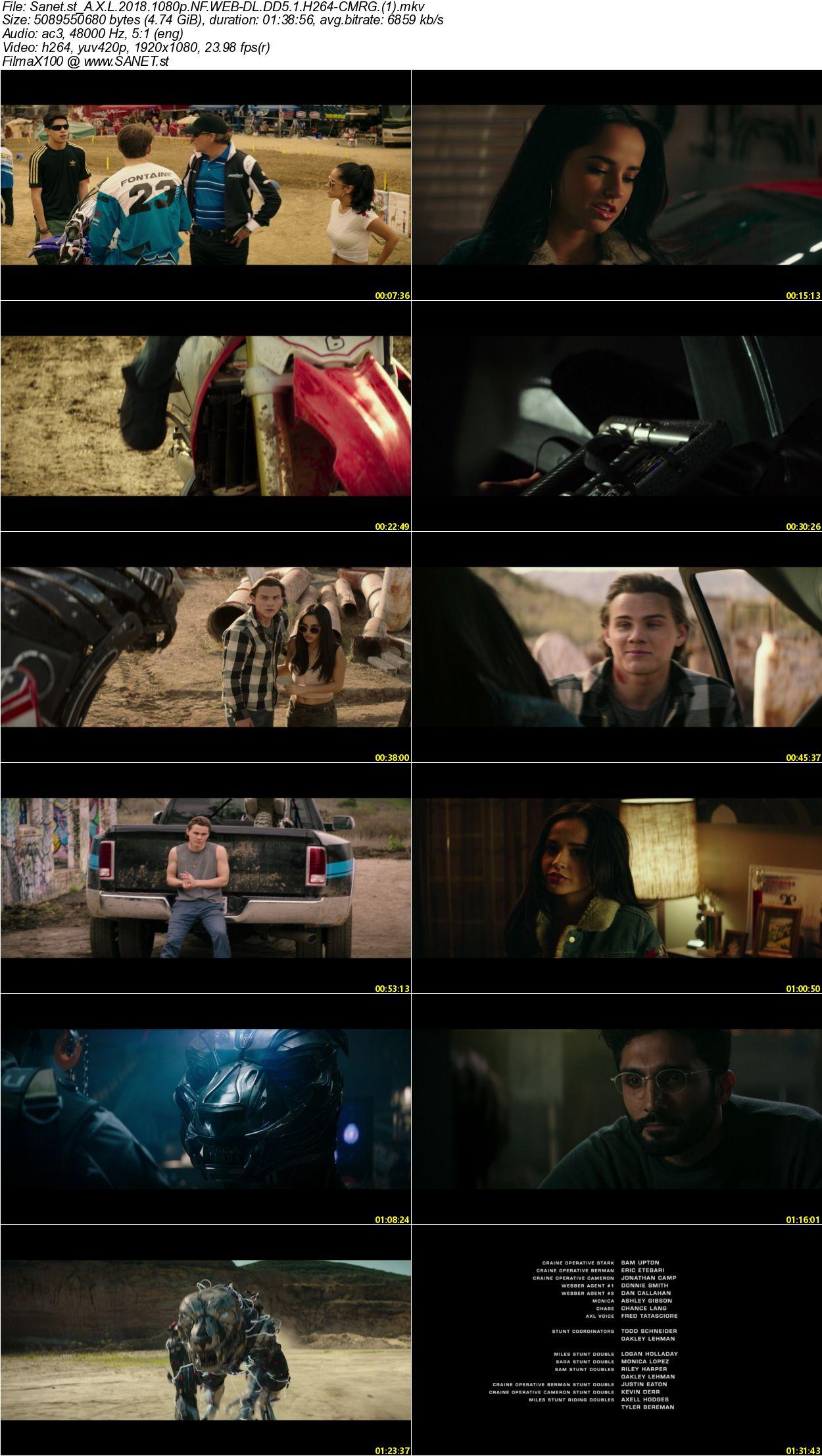 Axl Movie 2018 download a-x-l 2018 1080p nf web-dl dd5.1 h264-cmrg