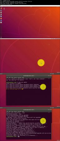 Web Development Environment in Ubuntu 18.04 VM on Windows