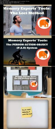 Memory Experts Tools Bundle: 6 Courses in 1