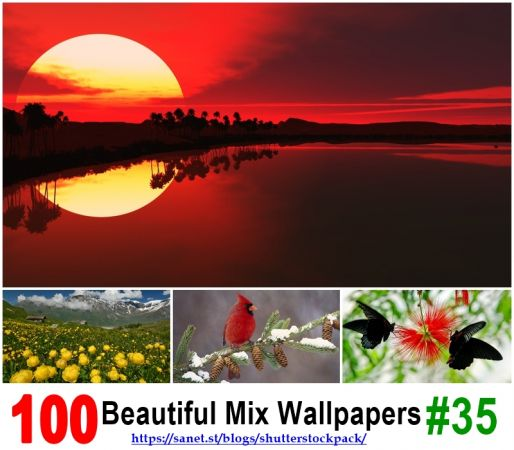 Beautiful Mix Of Beautiful Wallpapers # 35