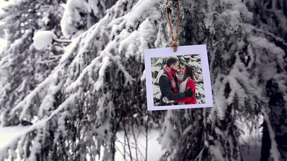 Photos In The Winter Forest 161931 - After Effects Templates