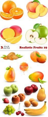 Vectors - Realistic Fruits - 19
