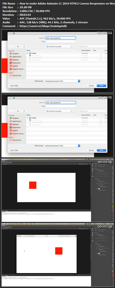 HTML5 CANVAS ANIMATION EXAMPLES - Download How to make Adobe