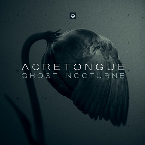 Acretongue - Ghost Nocturne (2019) FLAC