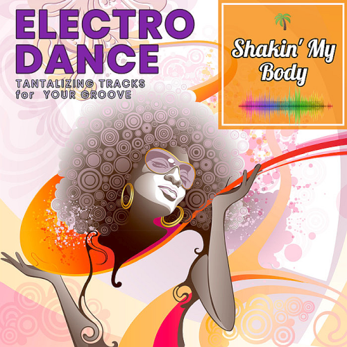 VA - Shakin My Body: Tantalizing Electro Dance Tracks For your Groove (2019) MP3