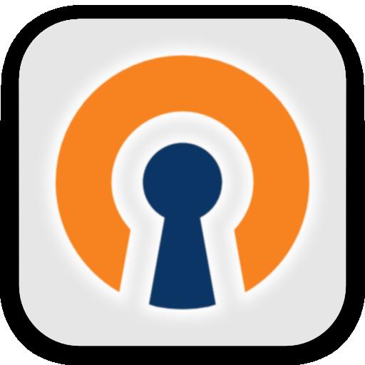 OpenVPN 2.4.8