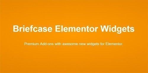 Download Briefcase Elementor Widgets v1 4 5 - NULLED