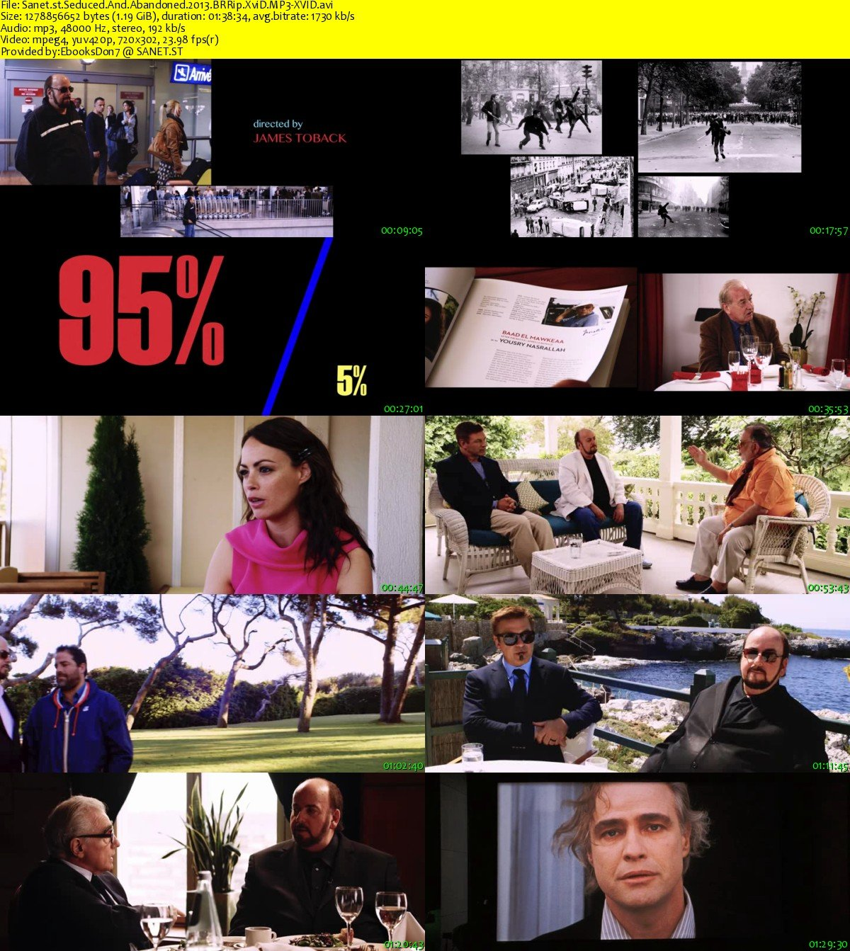 Download Seduced And Abandoned 2013 BRRip XviD MP3-XVID