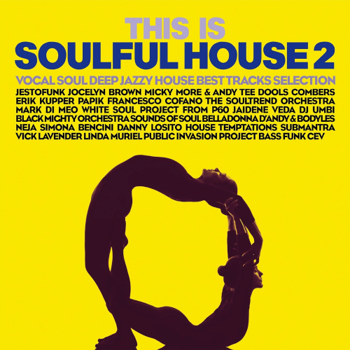 VA - This Is Soulful House Vol.2 Vocal Soul Deep Jazzy House Best Tracks Selection (2019)