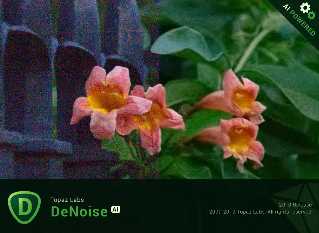 Topaz DeNoise AI 1.0.3