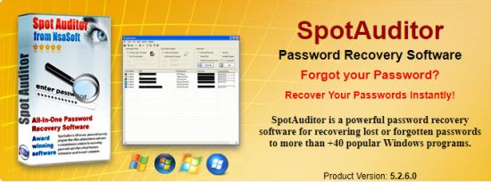 Download Nsasoft SpotAuditor 5 2 7 - SoftArchive