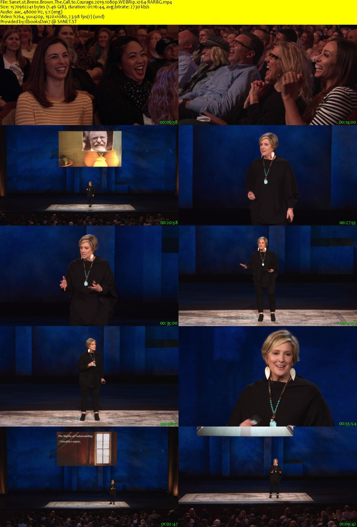 Download Brene Brown The Call to Courage 2019 1080p WEBRip x264