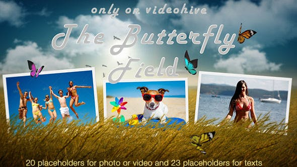 Download VideoHive Photo Slideshow - Butterfly Field - After