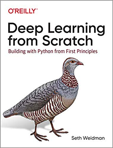 Download Deep Learning from Scratch: Building with Python