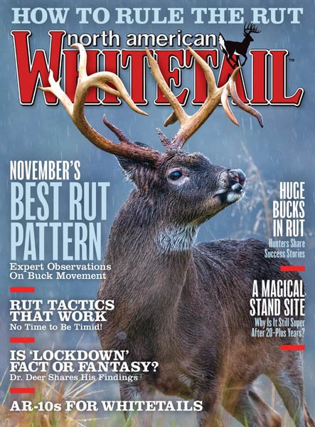 North American Whitetail - November 2019