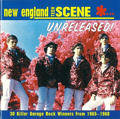 VA - New England Teen Scene...Unreleased! 30 Killer Garage Rock Winners From 1965-1968 (1996)